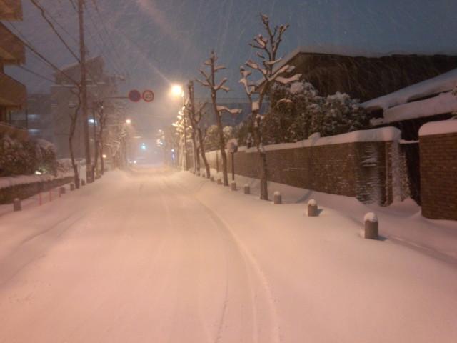 大雪の日の白い道(八王子市中心部)