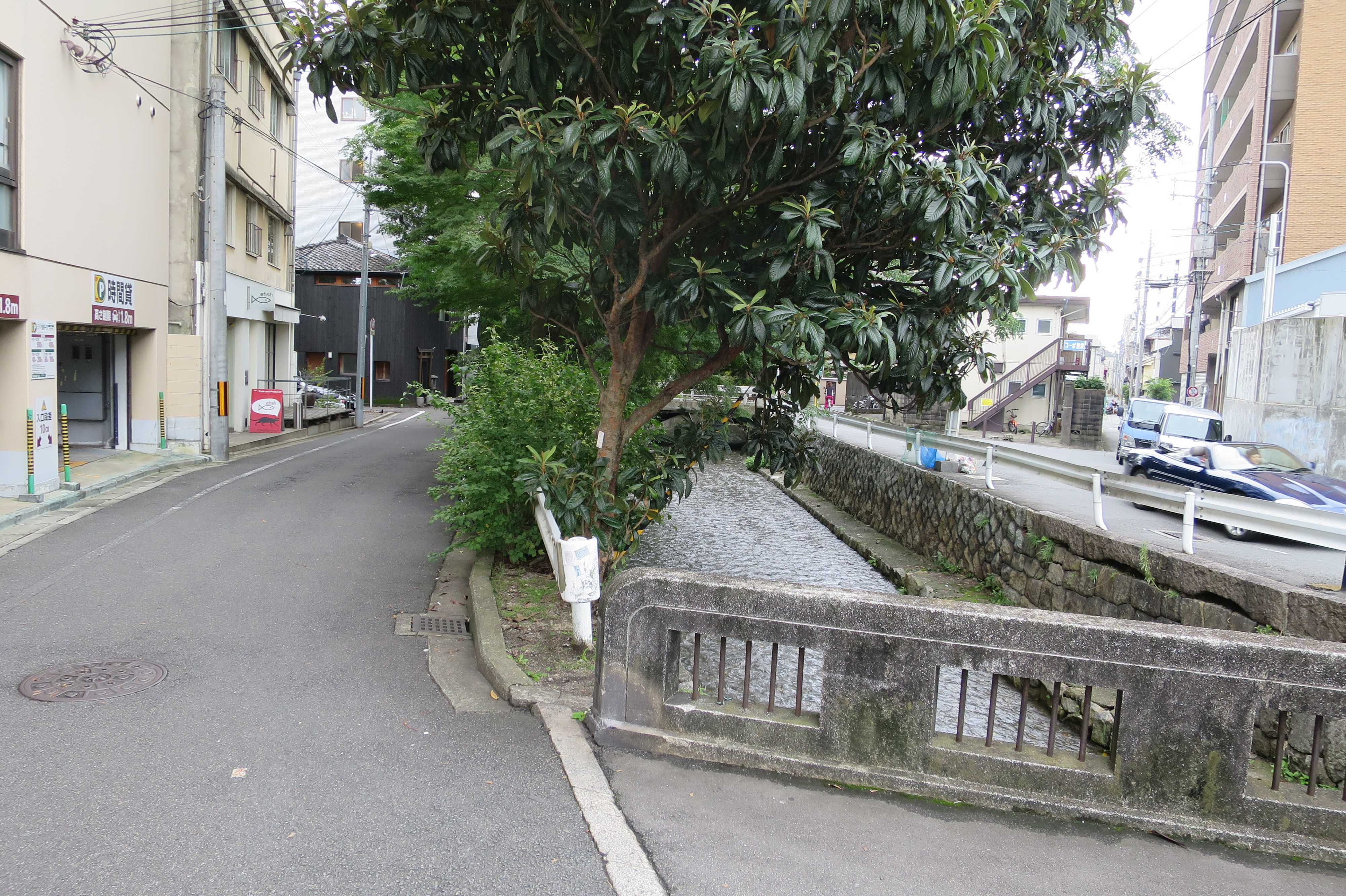 京都・木屋町通
