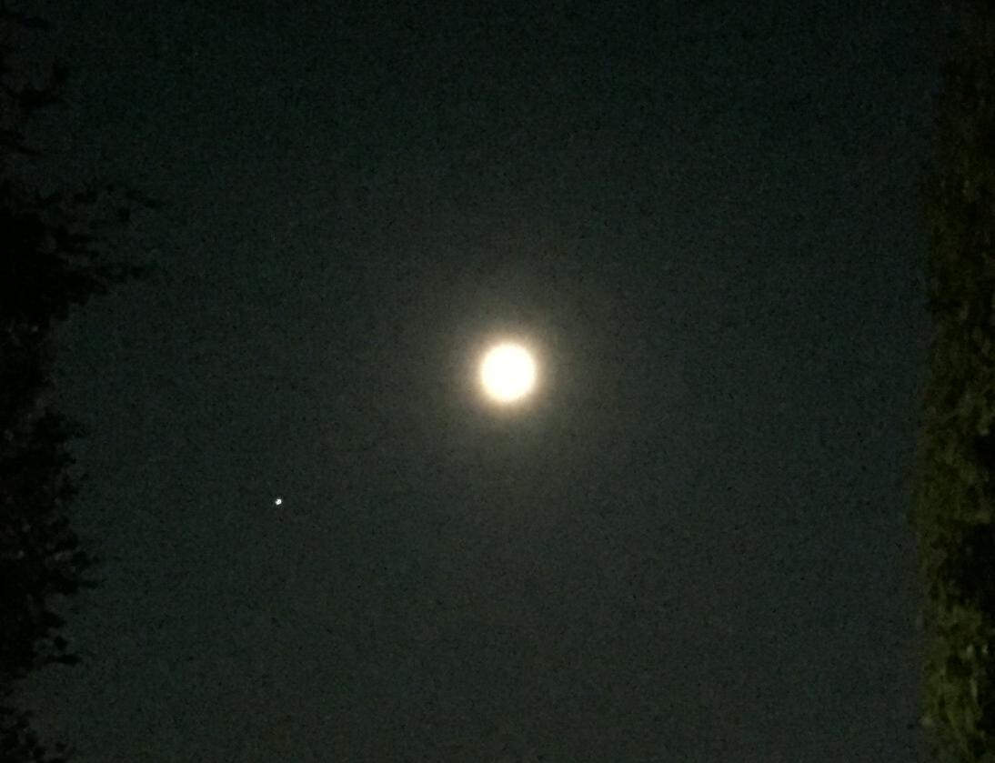 西の空で全面的に輝く満月