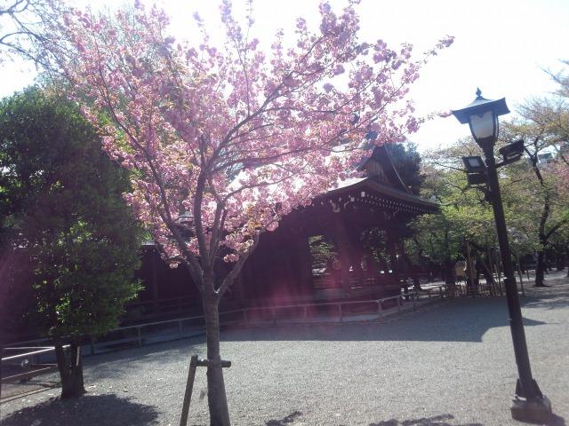 靖国神社の能楽堂