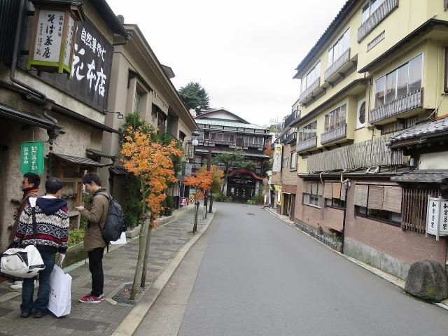 箱根湯本の老舗旅館・萬寿福旅館(ますふくりょかん )