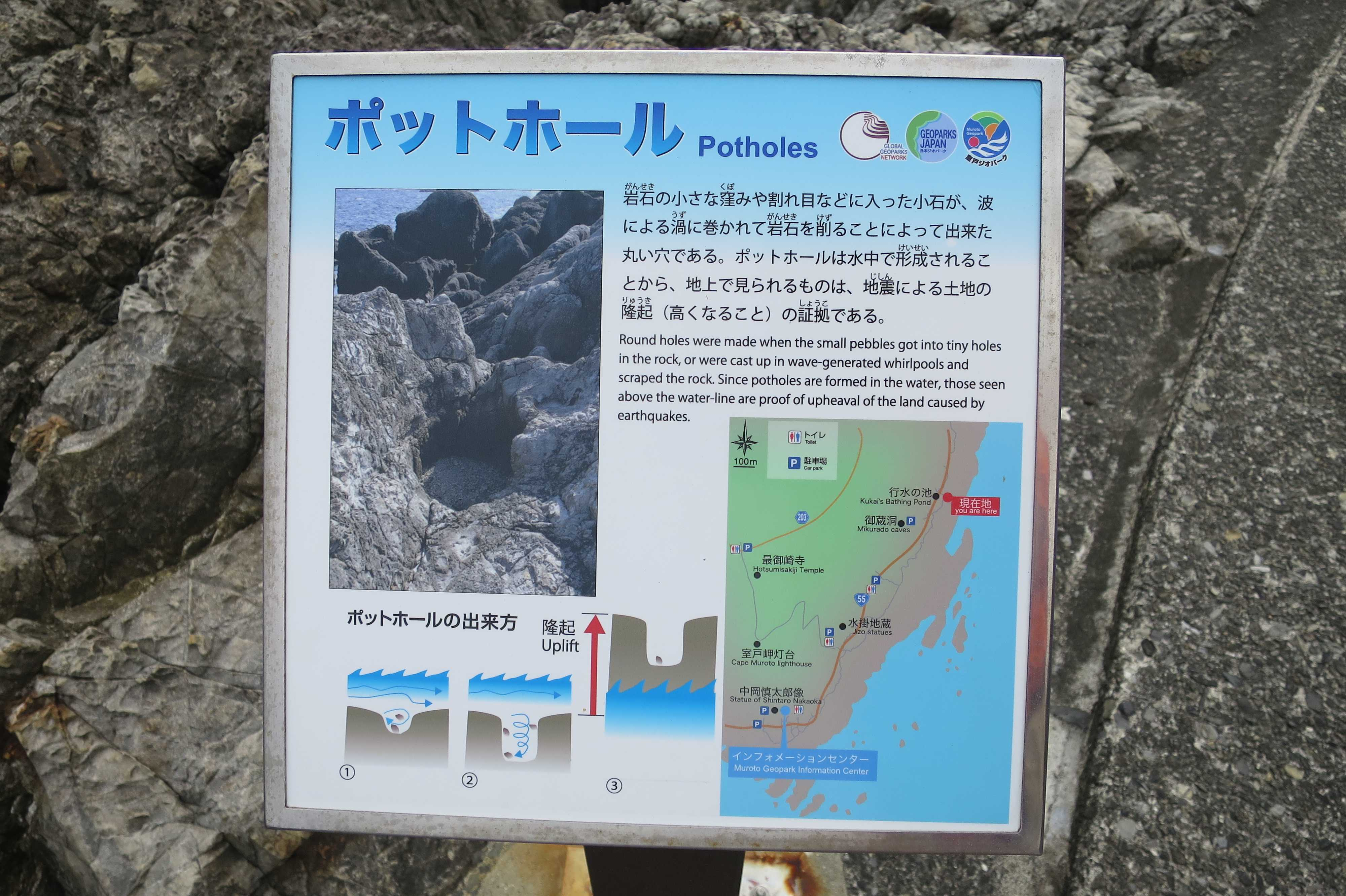 ポットホール Potholes - 室戸岬 乱礁遊歩道