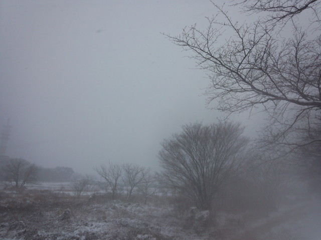 雪の浅川(東京都八王子市)