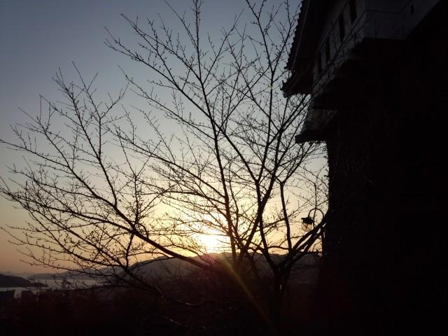 尾道城からの夕陽(夕日)