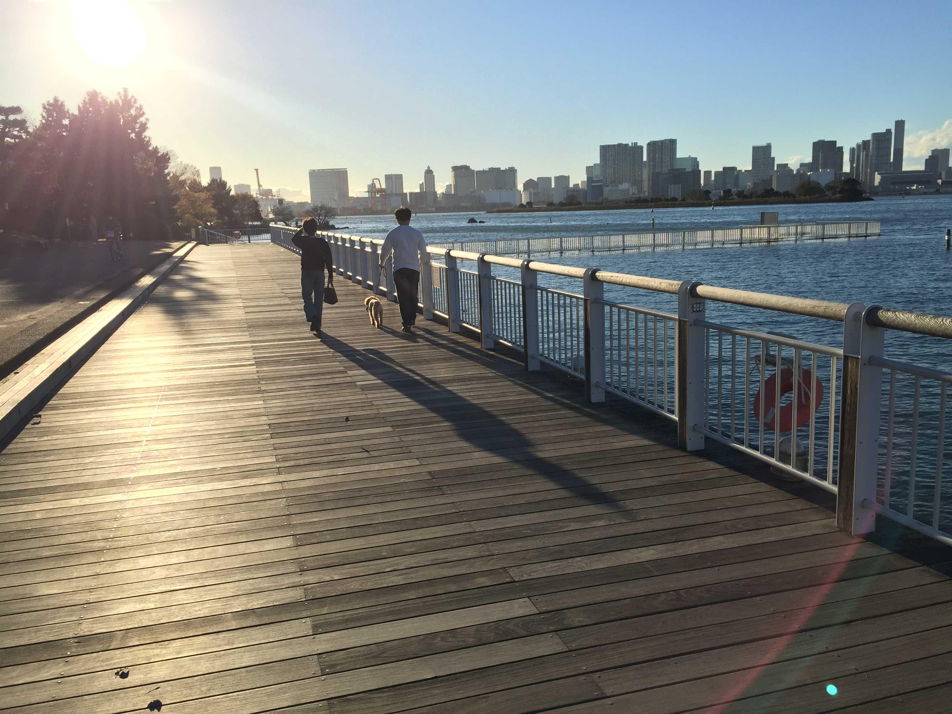 海辺の散歩 - お台場海浜公園