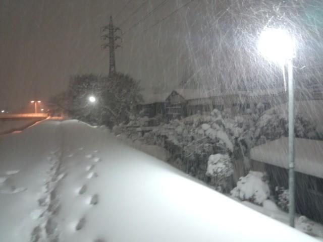 降りしきる雪(八王子大雪の日)