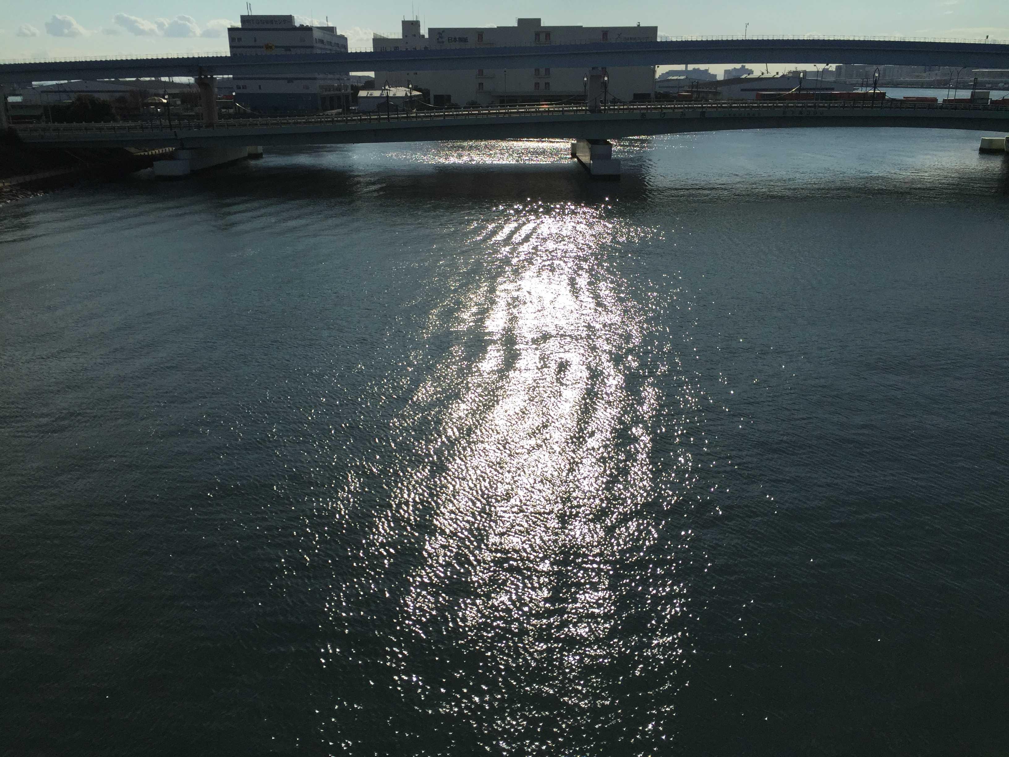 夢の大橋からの眺め