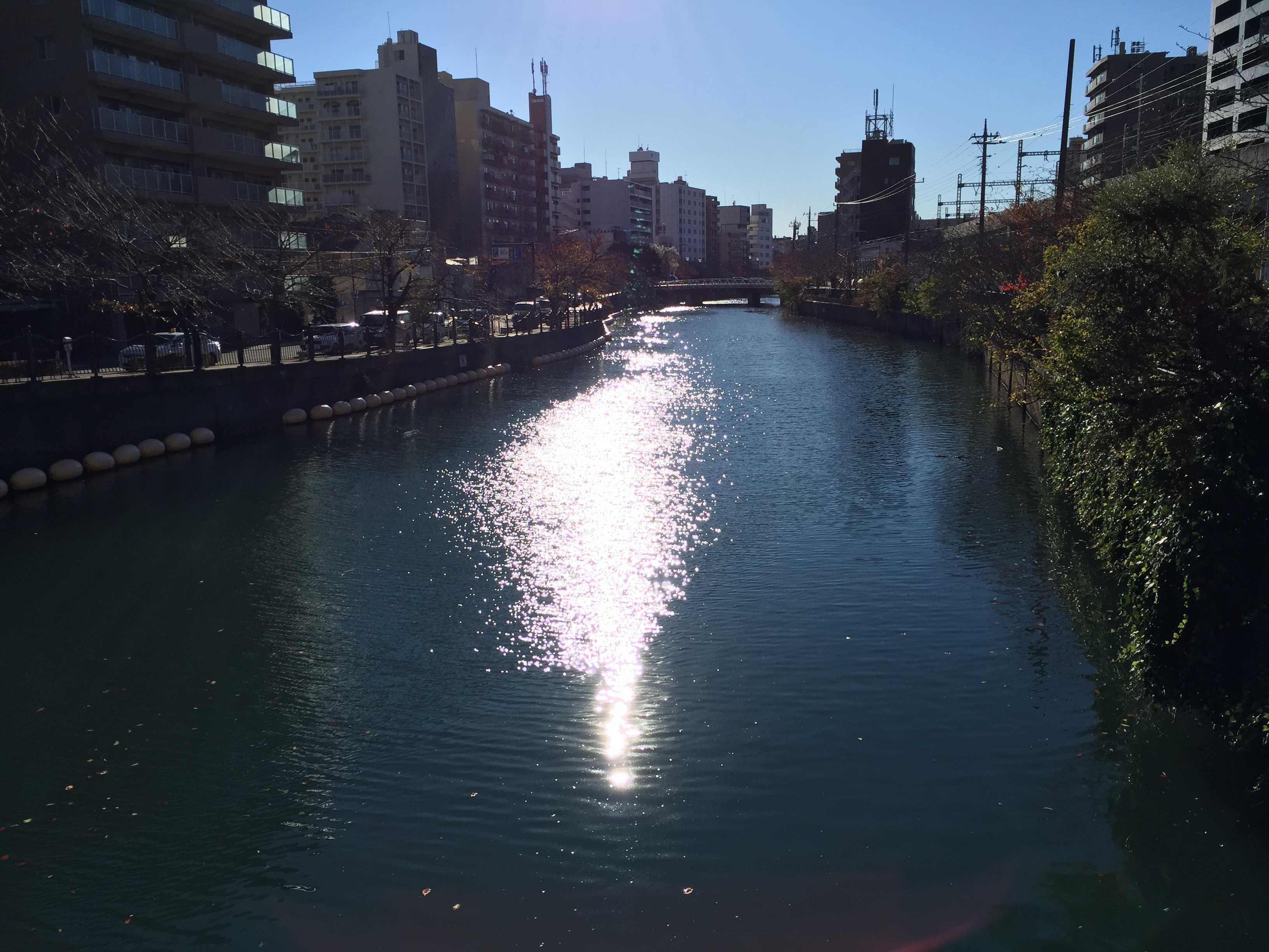 晩秋の大岡川