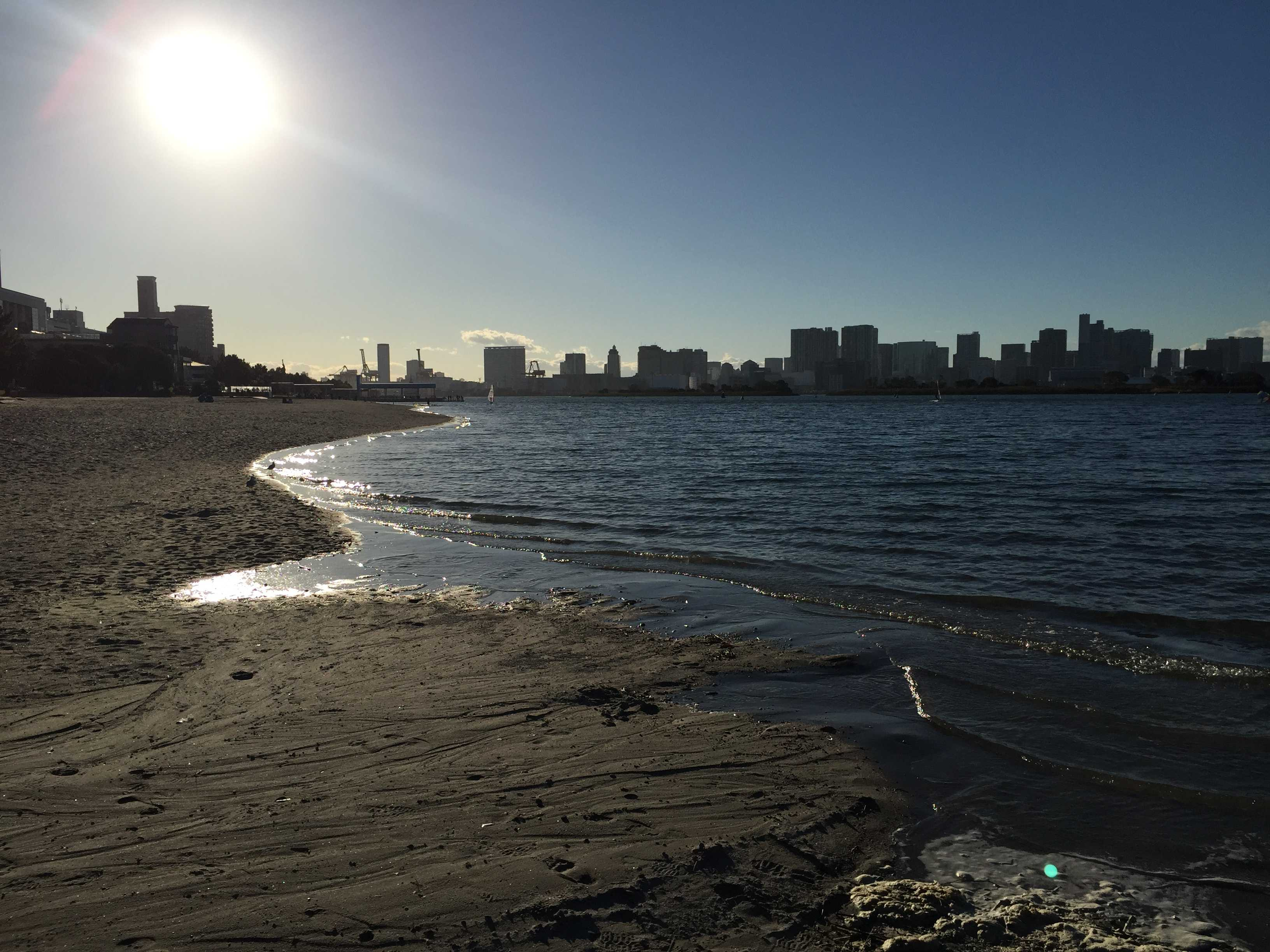 お台場海浜公園の浜