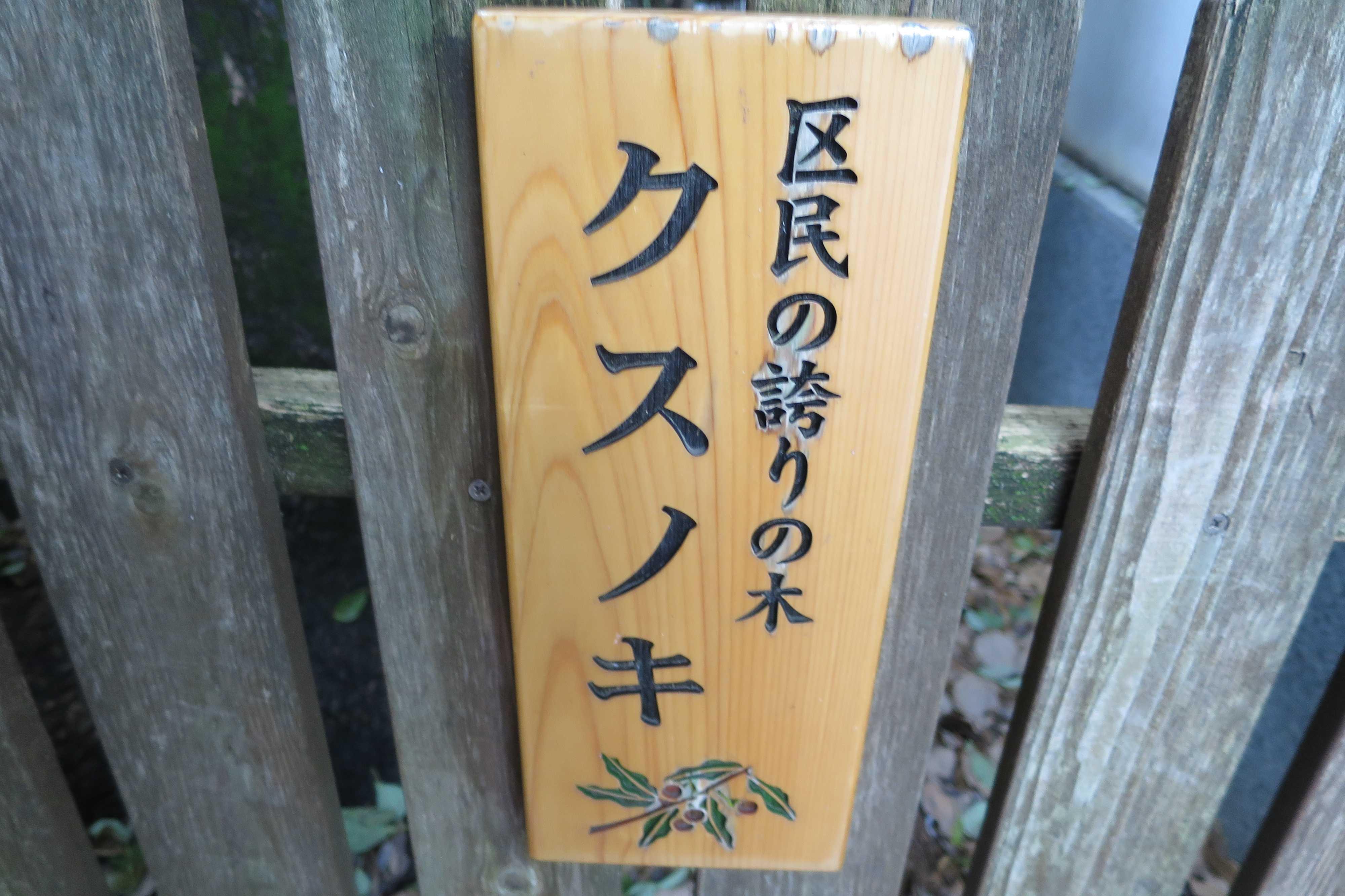 六角堂 - 区民の誇りの木 「クスノキ」