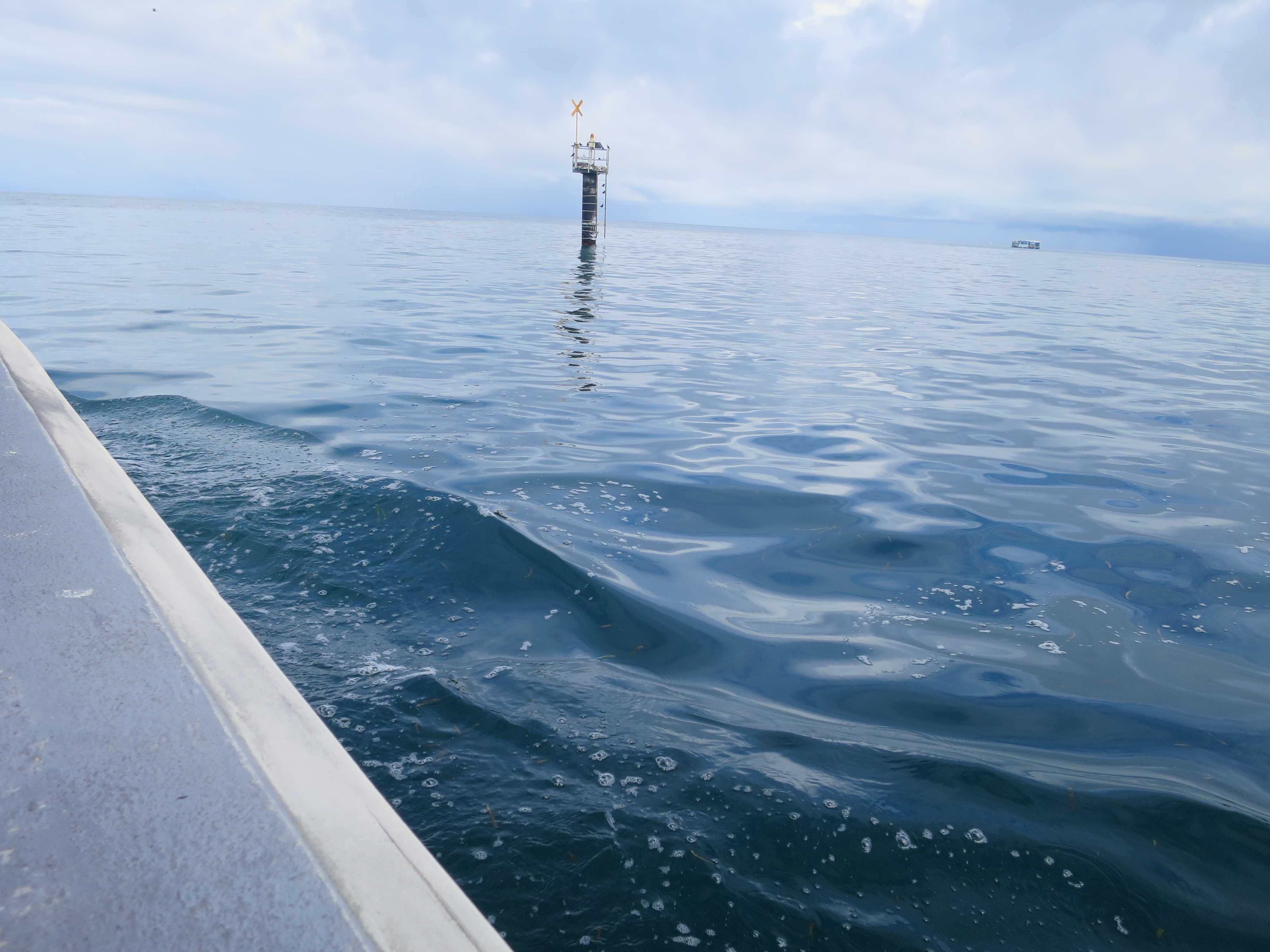 グリーン島 グラスボートからの眺め