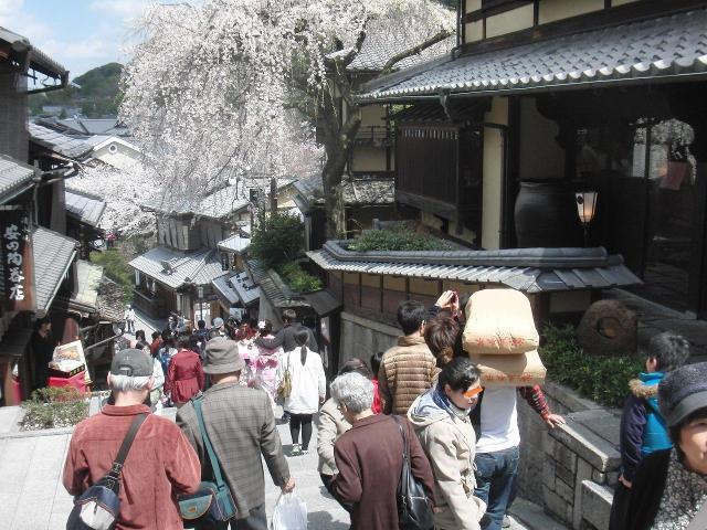 京都のさくら
