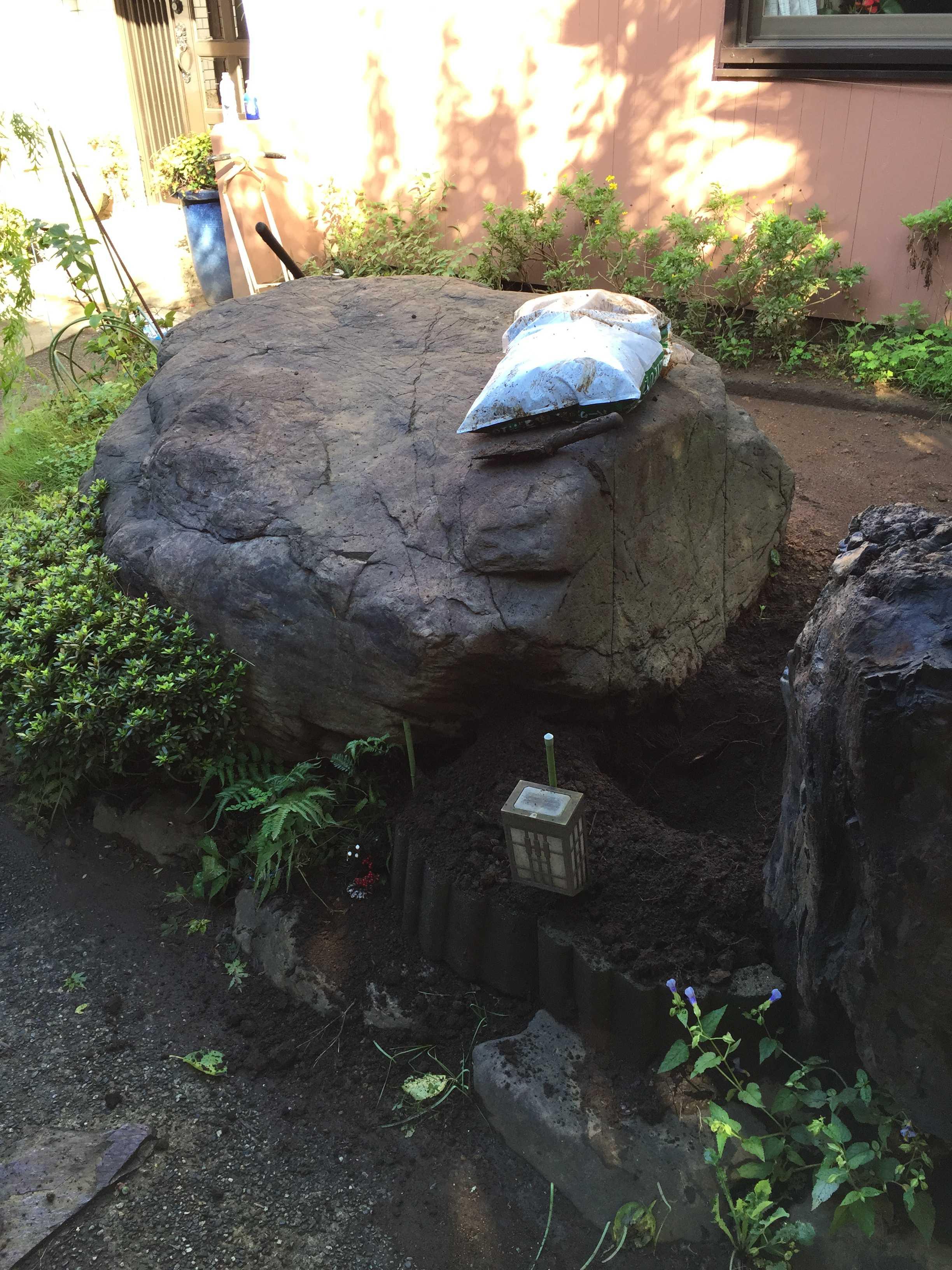 サルスベリ夏祭りを咲かせる予定の庭石