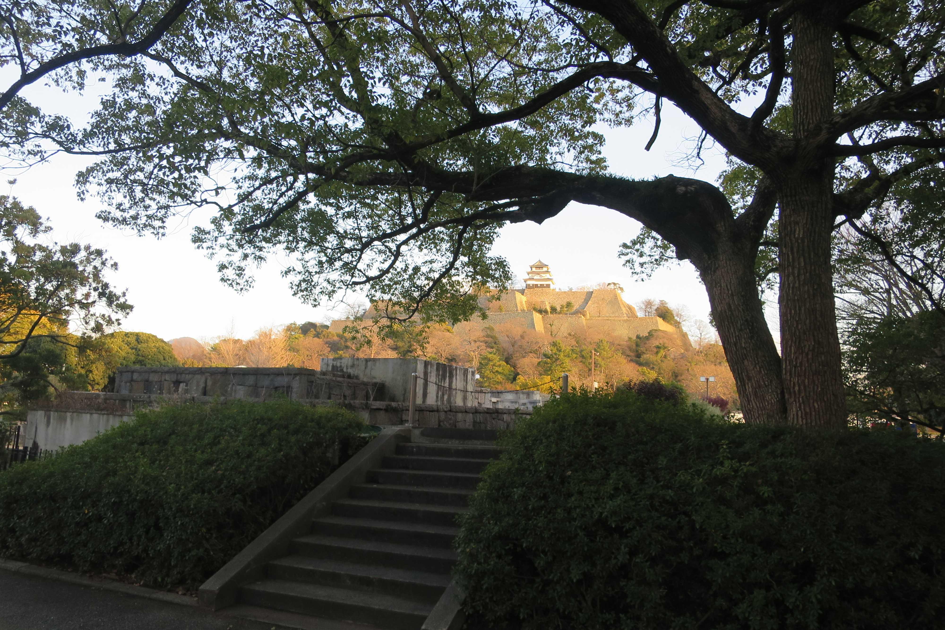 丸亀市民ひろばから見えた丸亀城