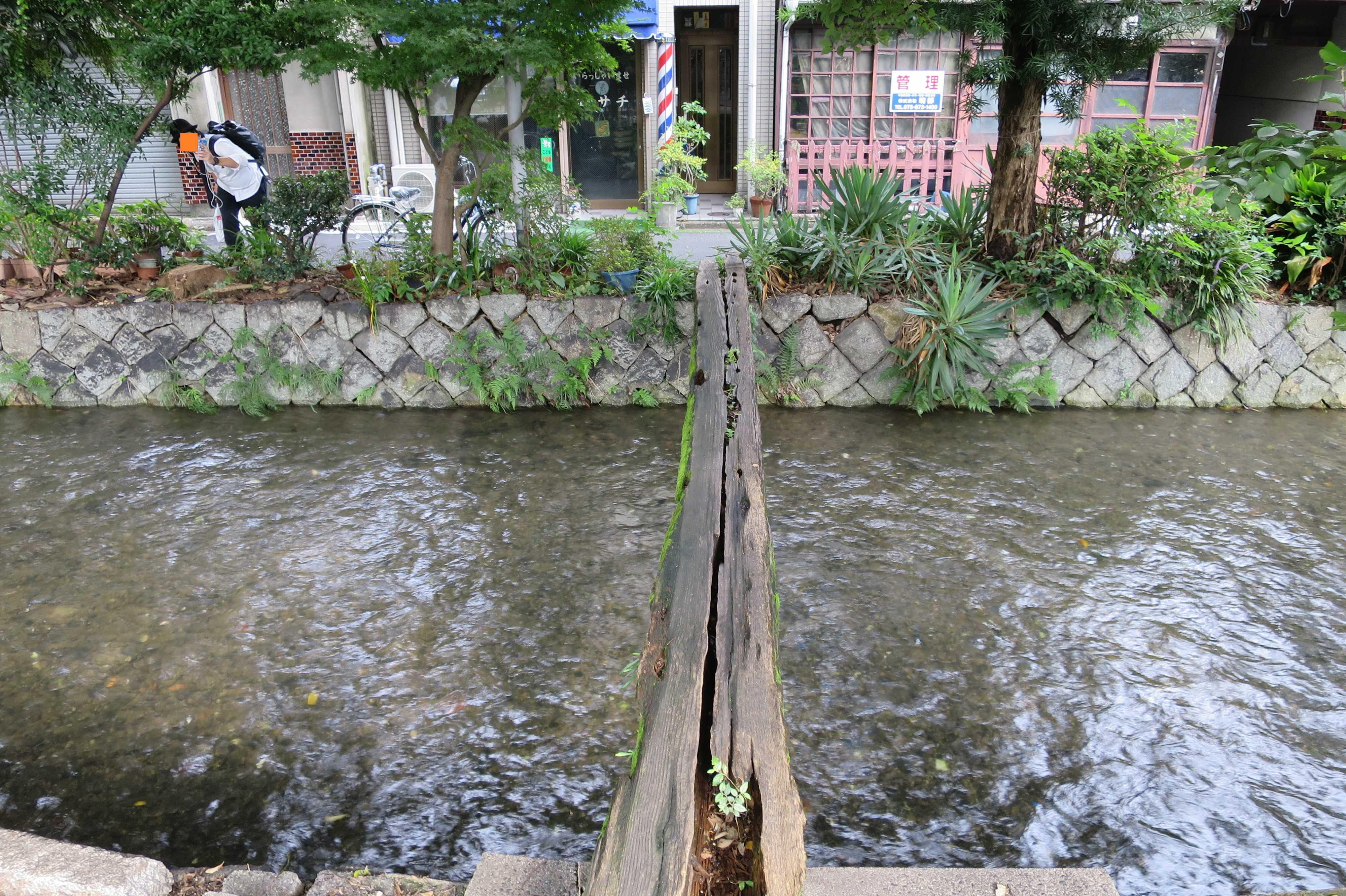 京都・五条楽園 - 高瀬川の一本橋