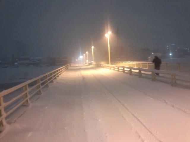 幻想的な暁橋(大雪の日・八王子市)