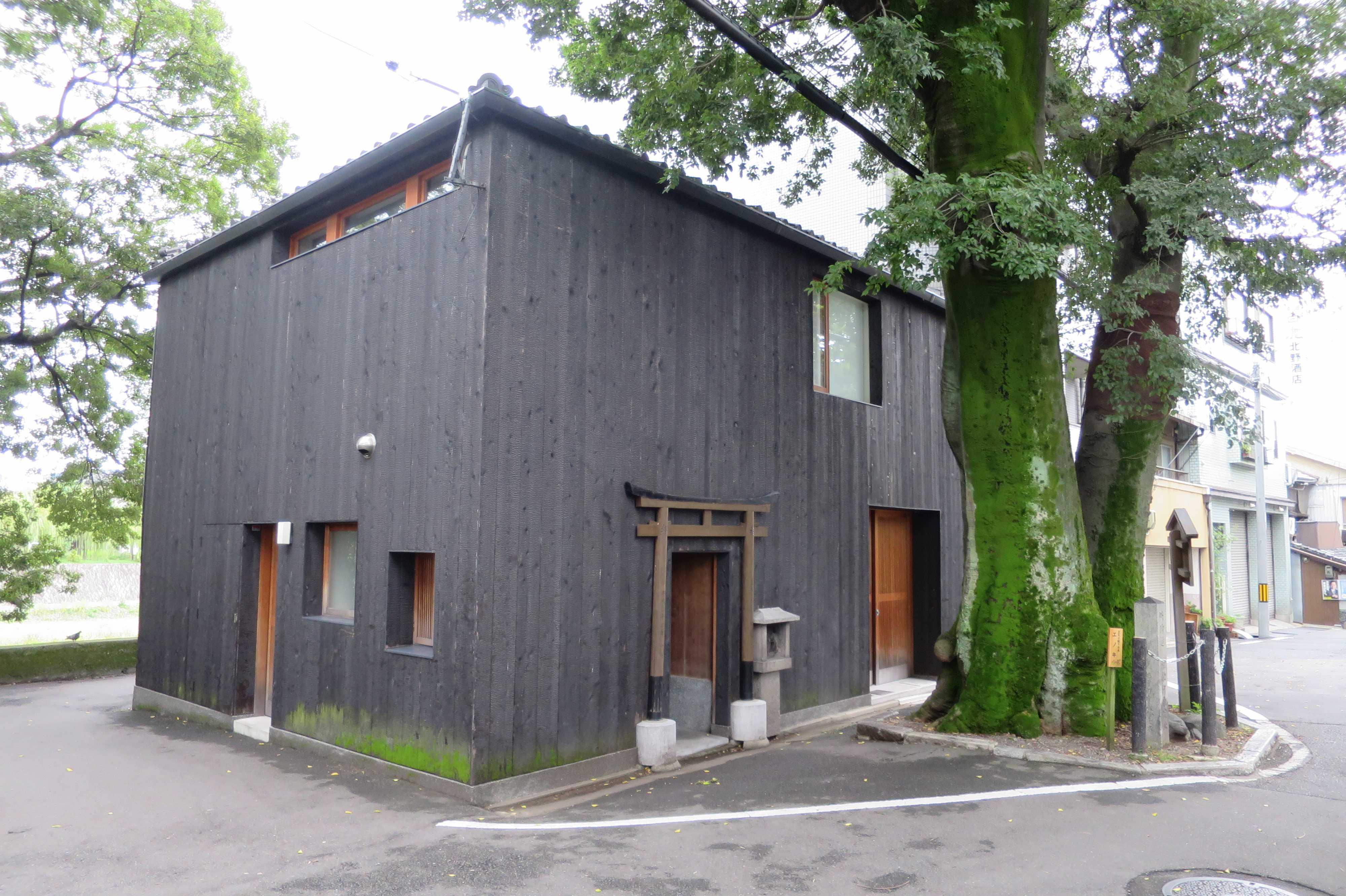 京都・五条 - 源融の木