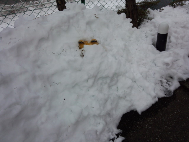 雪に埋もれた犬の置物