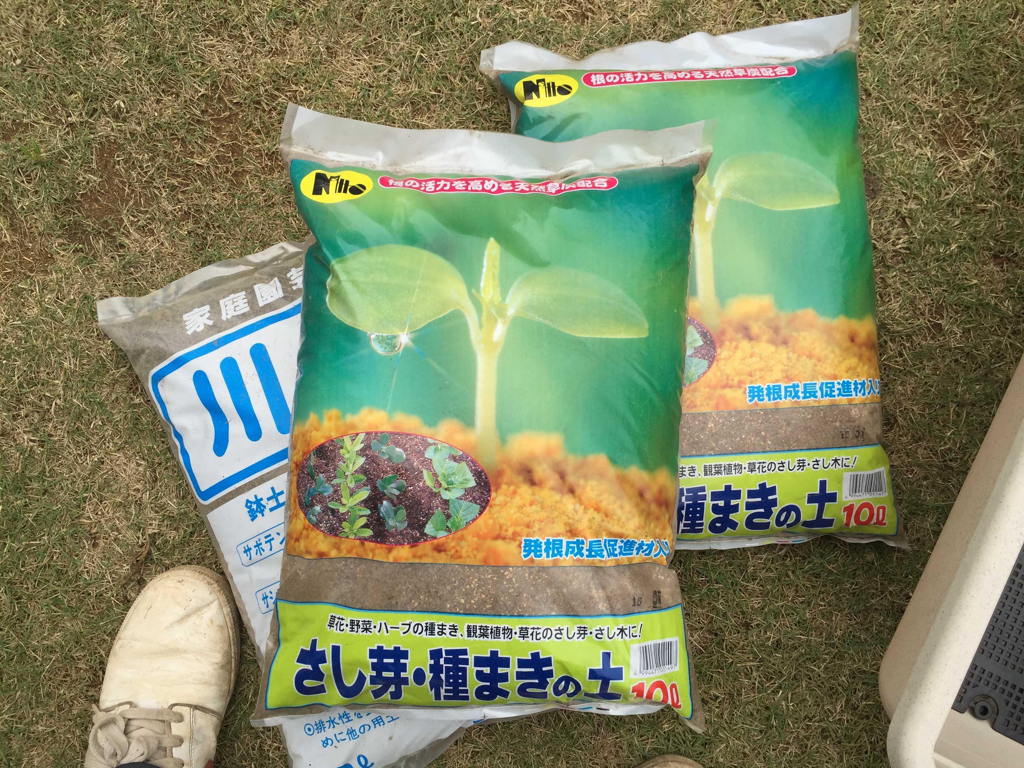 ヤマユリの鱗片挿し - さし芽・種まきの土と川砂