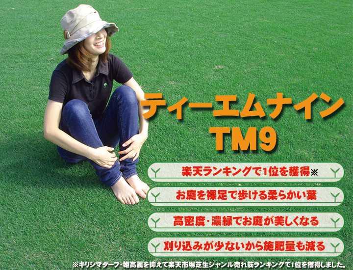TM9(ティー エム ナイン)