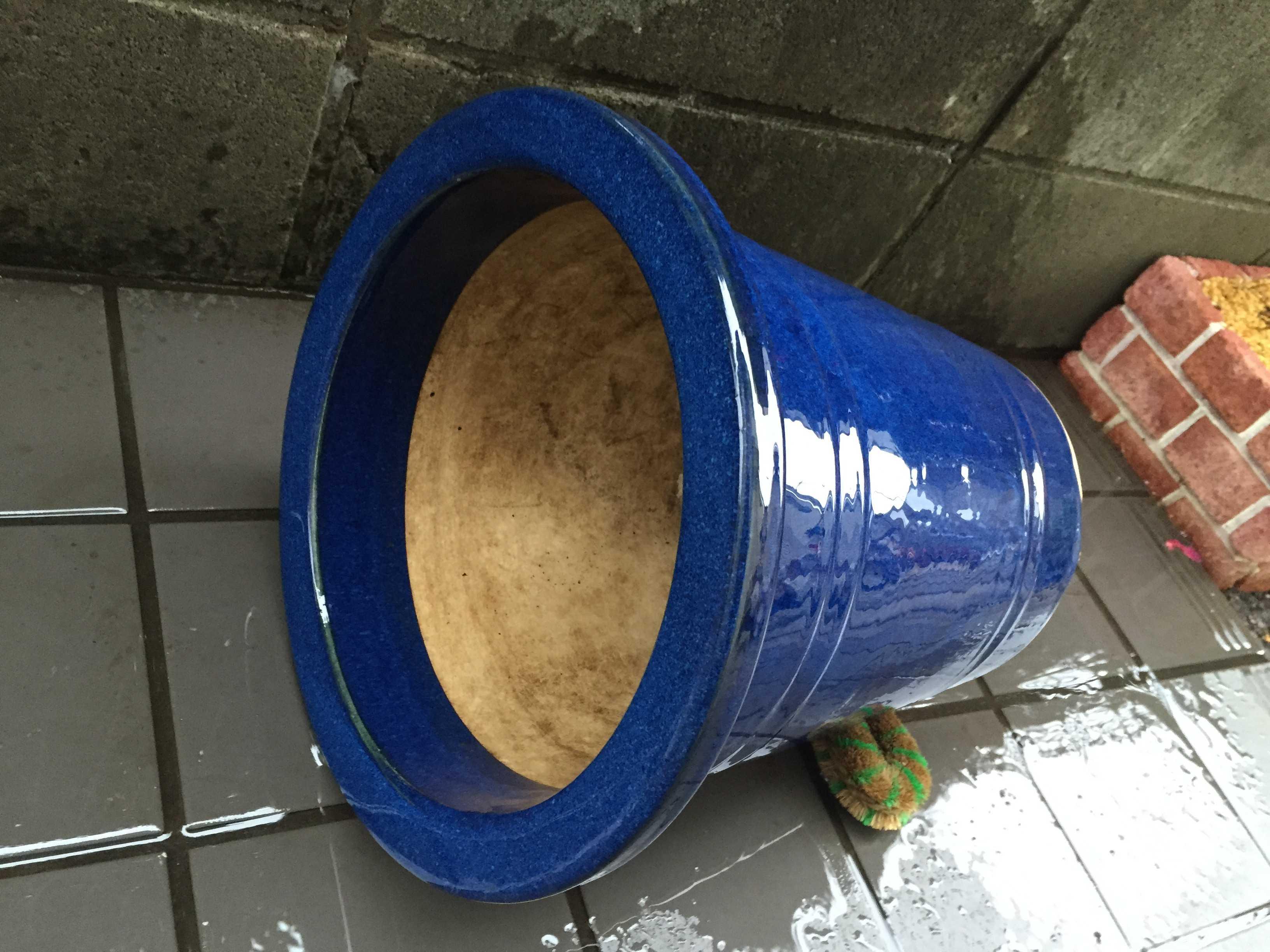 美しい青い化粧鉢(瀬戸鉢)