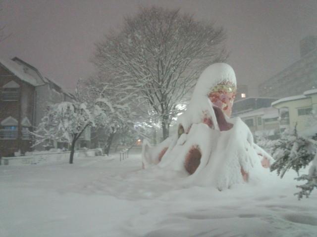 大雪の日のタコ公園(八王子市明神町)