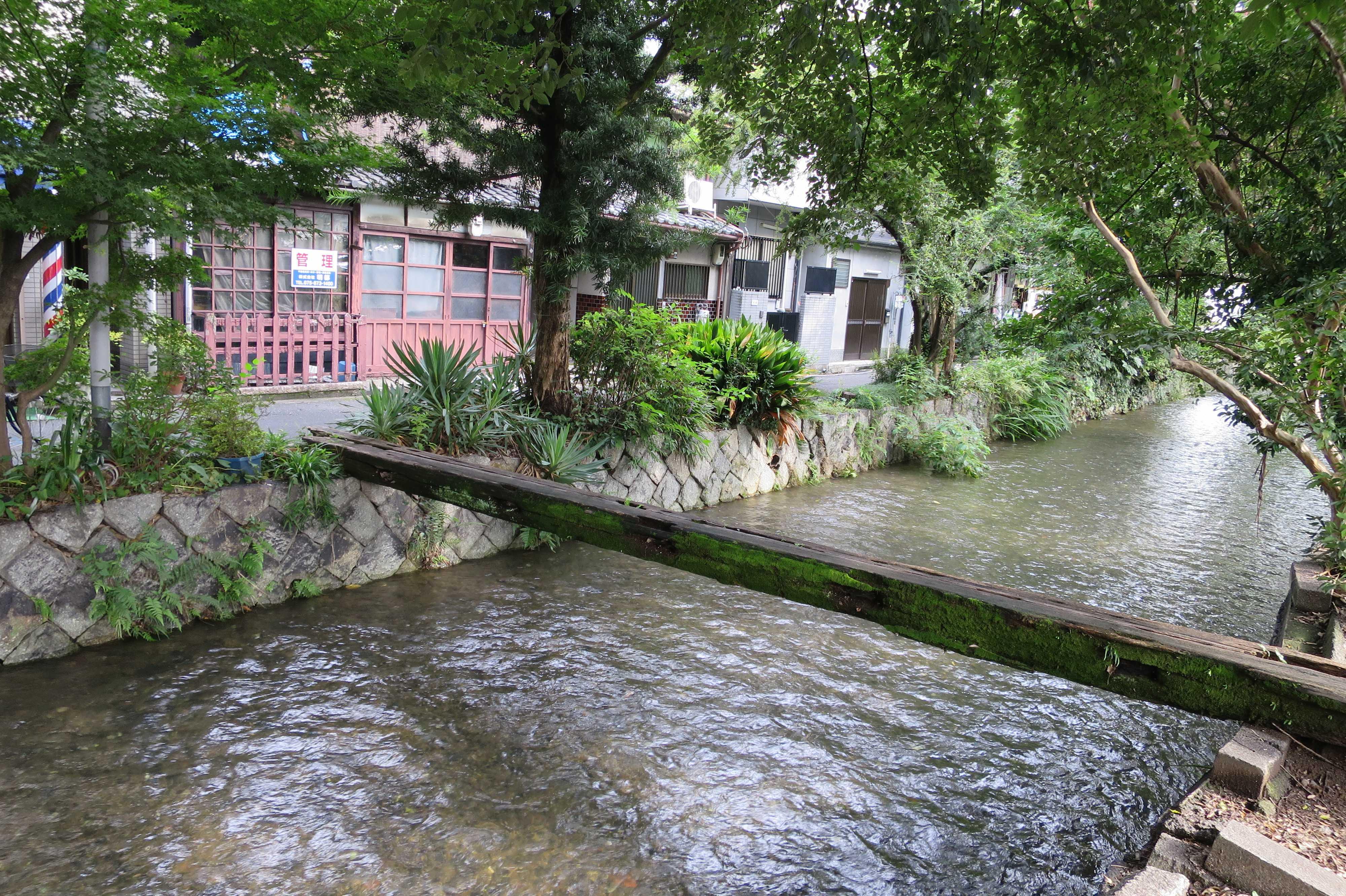 京都・五条楽園 -