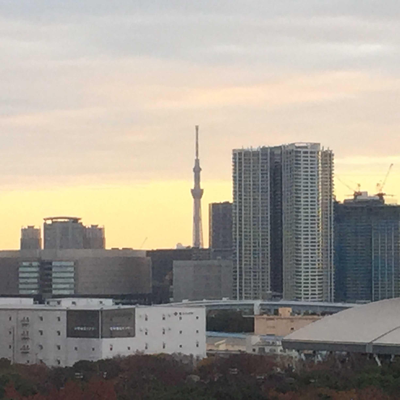 東京ベイコート倶楽部から見える東京スカイツリー