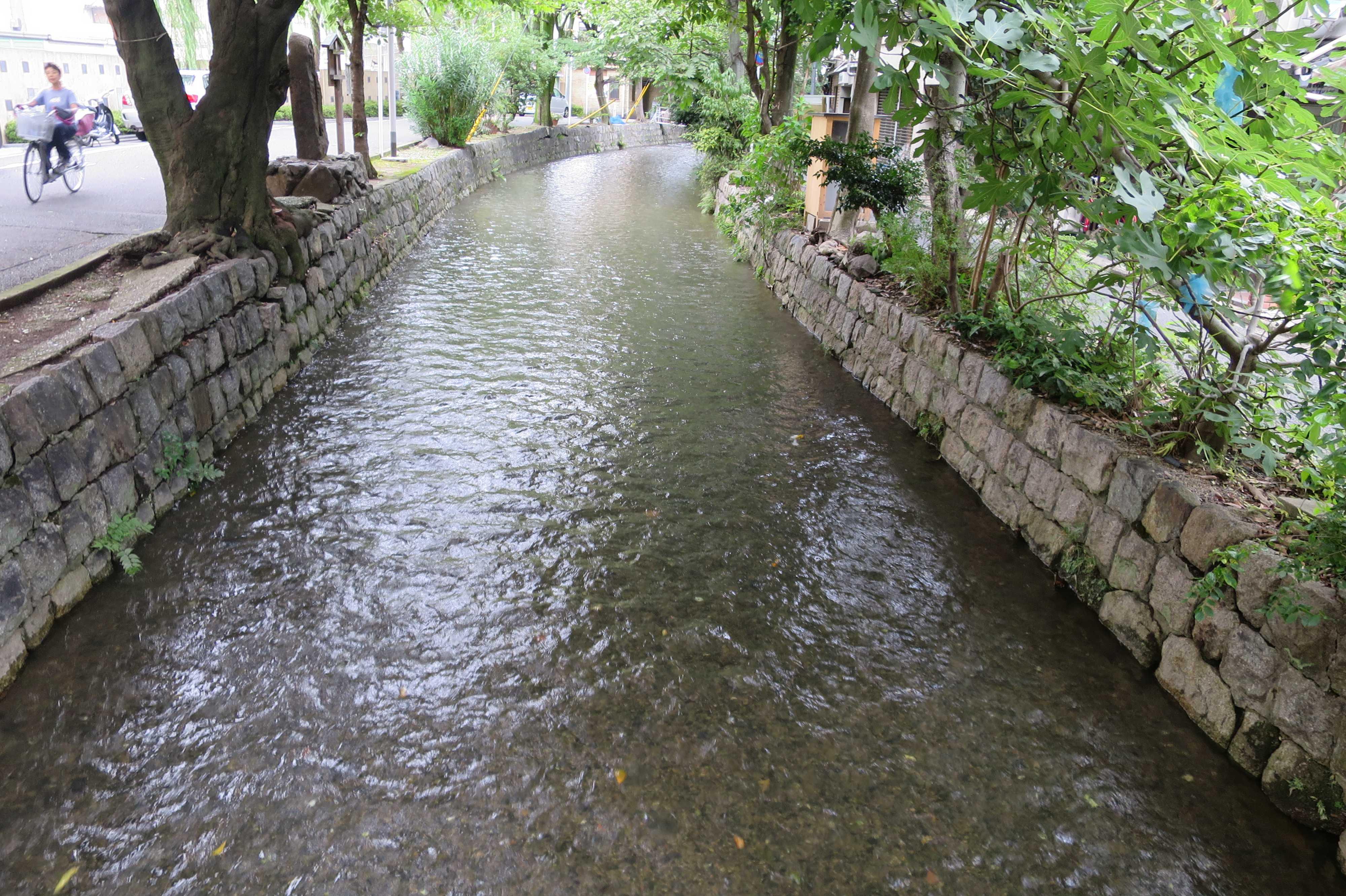 京都・五条楽園 - きれいな水が静かに流れるうつくしい高瀬川。