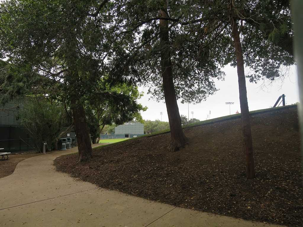 スタンフォード大学 - 野球場