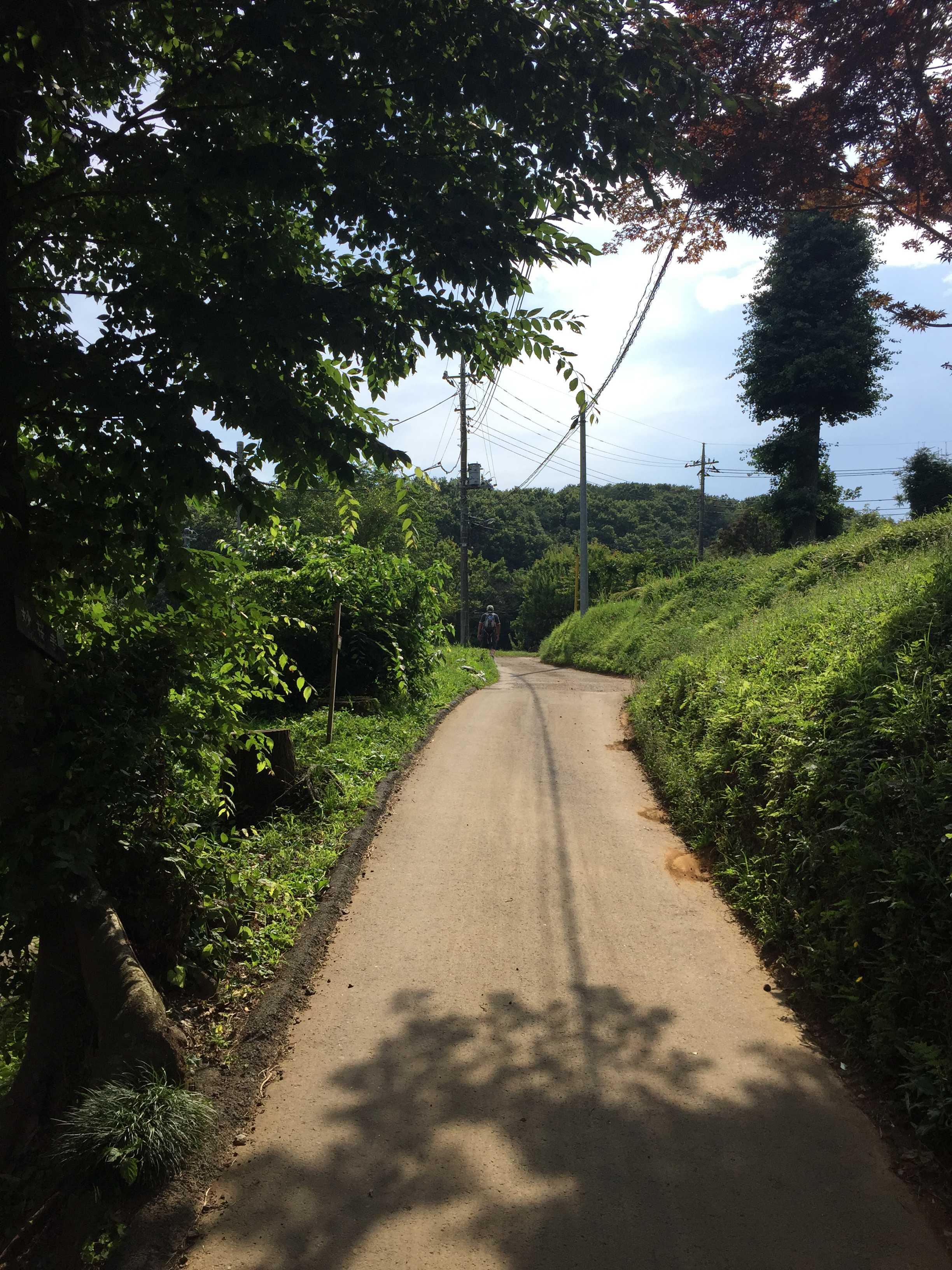 多摩の里山風景