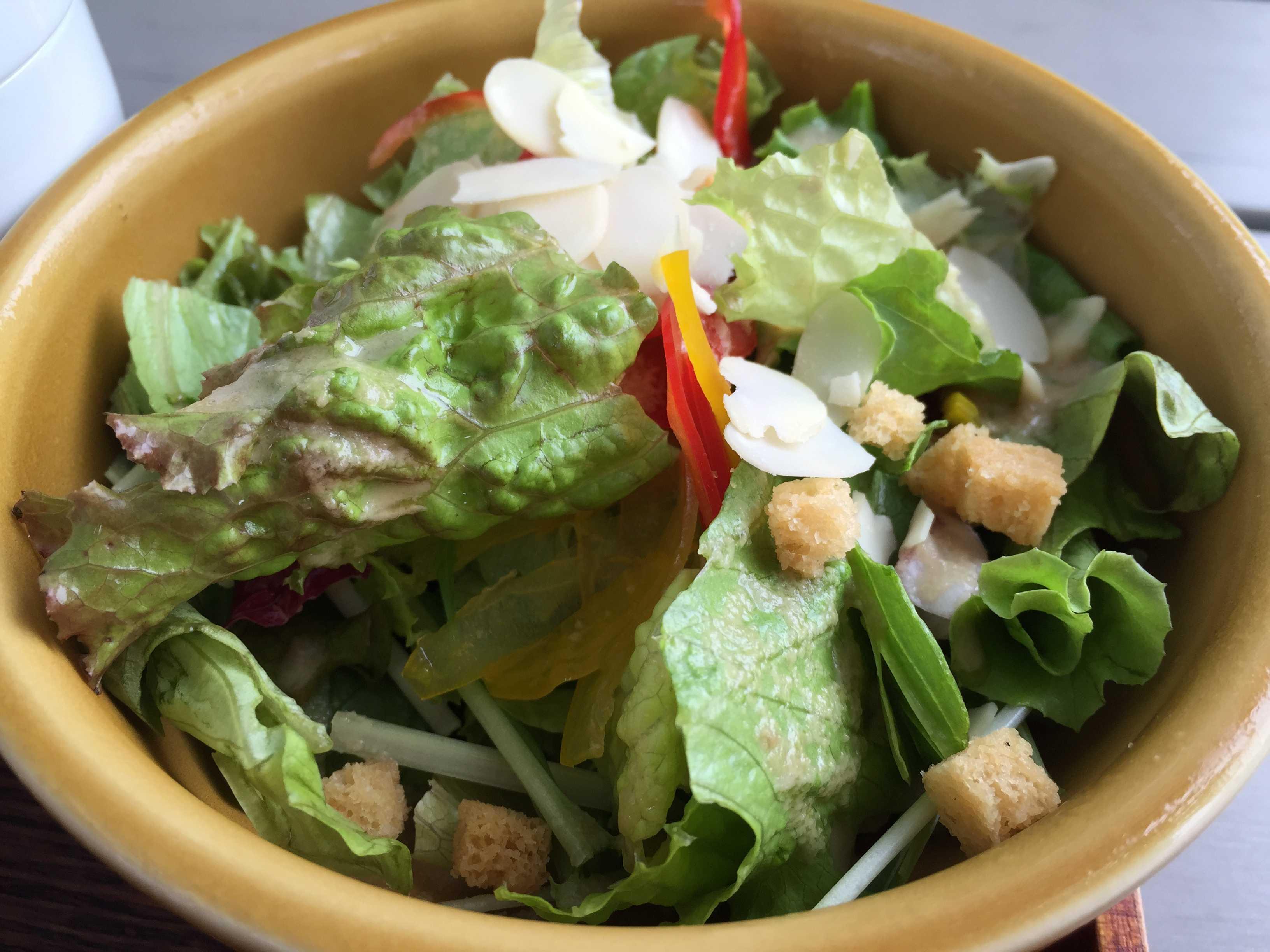 サラダ - カキノキテラス