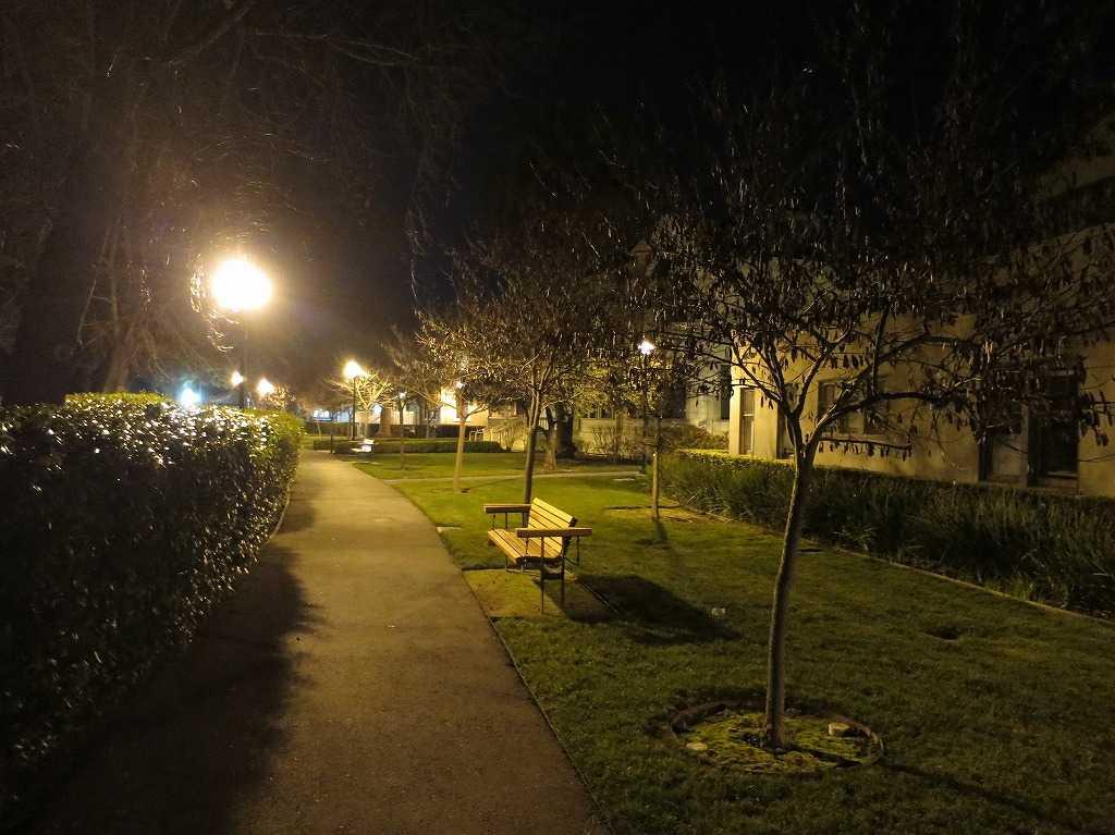 夜のスタンフォード大学構内