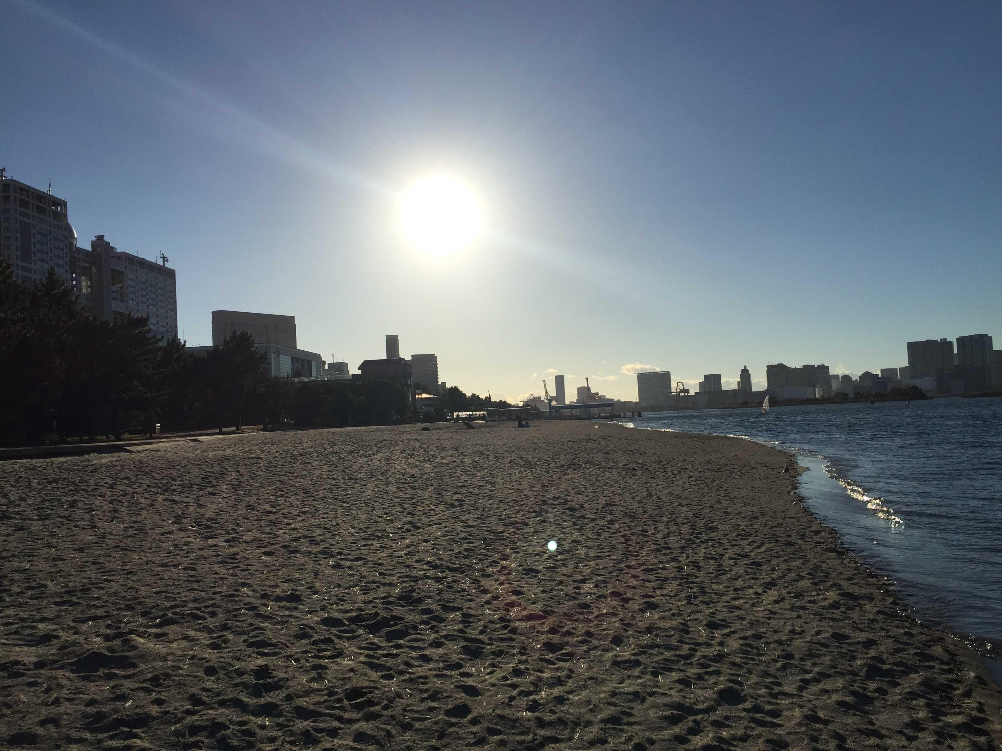 12月の午後の太陽 - 幕張海浜公園