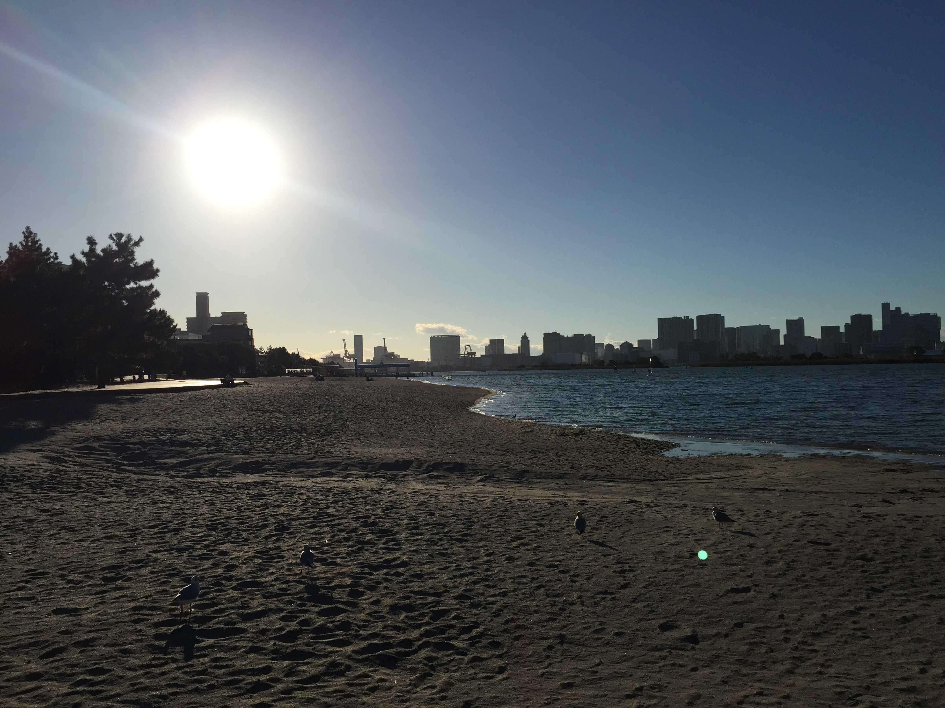 お台場海浜公園の浜辺