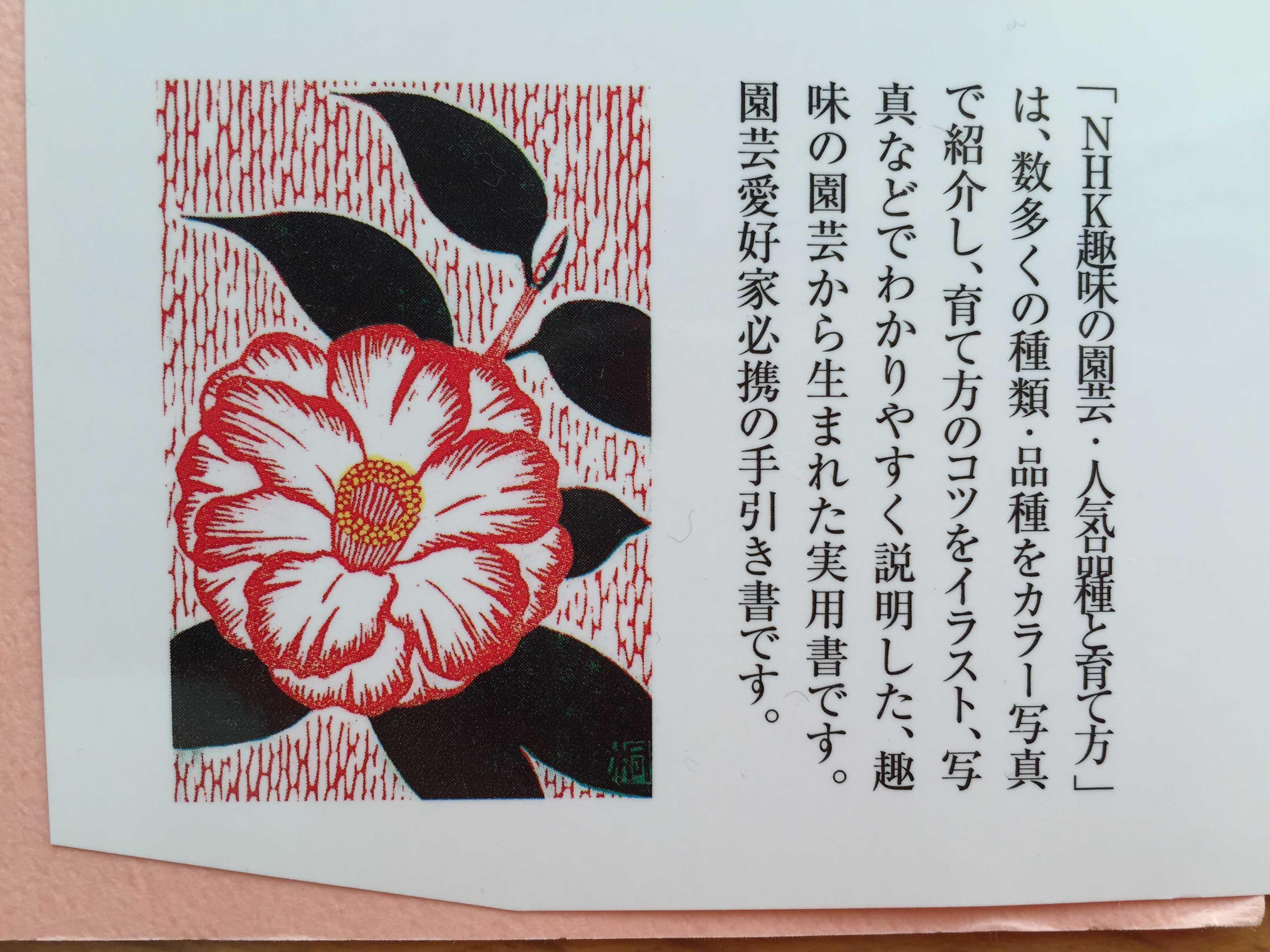 NHK趣味の園芸 人気品種と育て方 ツバキ・サザンカ