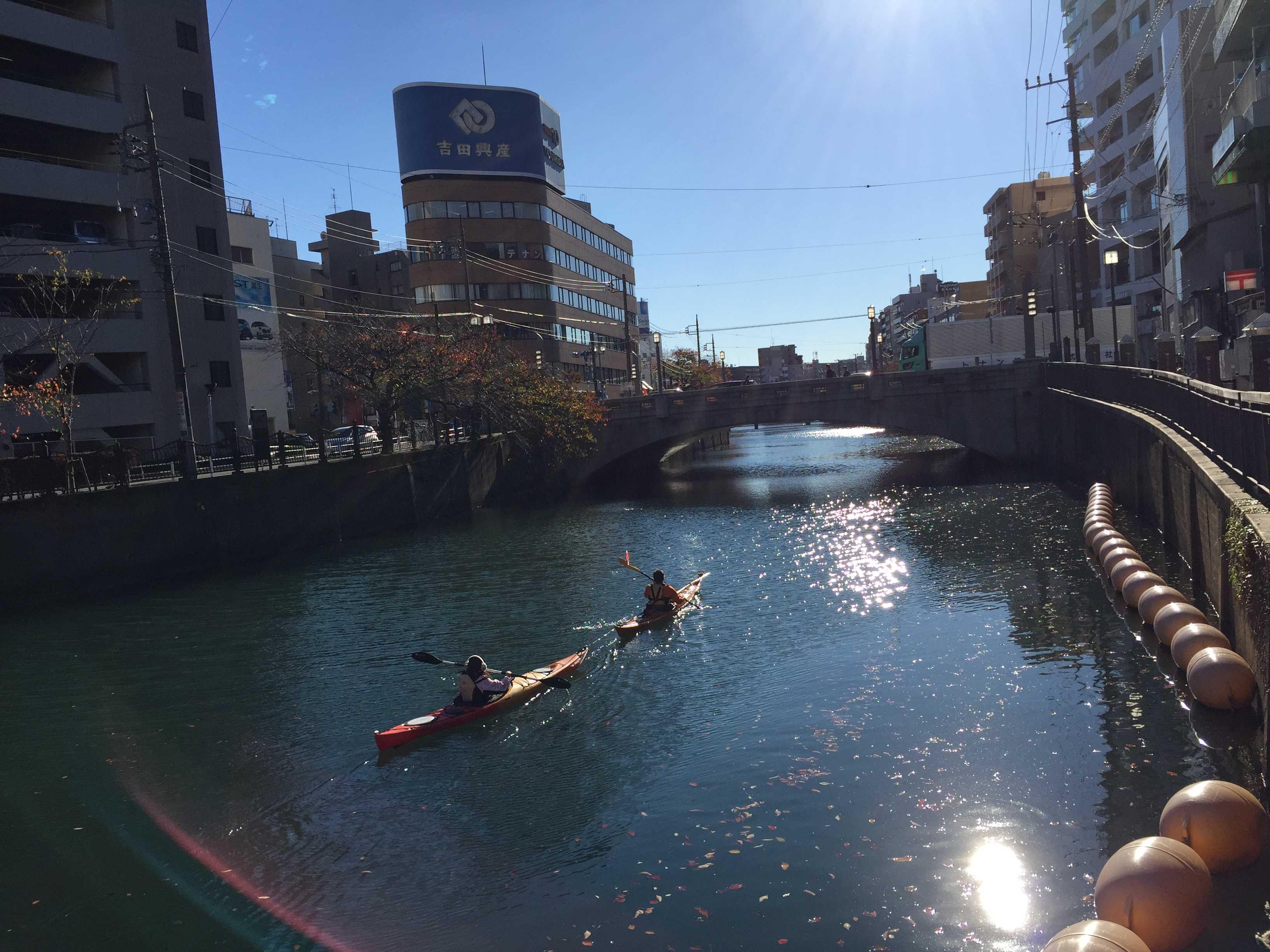 カヤック - 煌めく大岡川(横浜市)