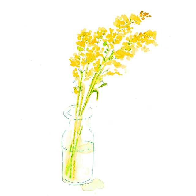 花,秋色,空き地,高塚由子,Yoshiko,Taaktsuka,水彩画,Watercolor,イラスト,素材,食材,食べ物