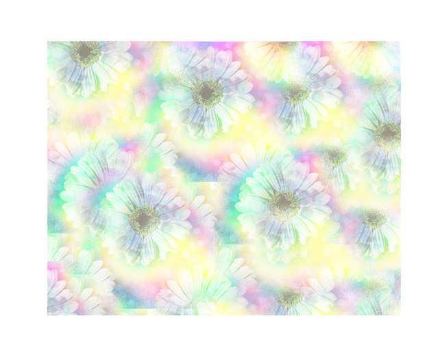 #マーガレット,#花,植物,高塚由子,Yoshiko,Taaktsuka,イラスト