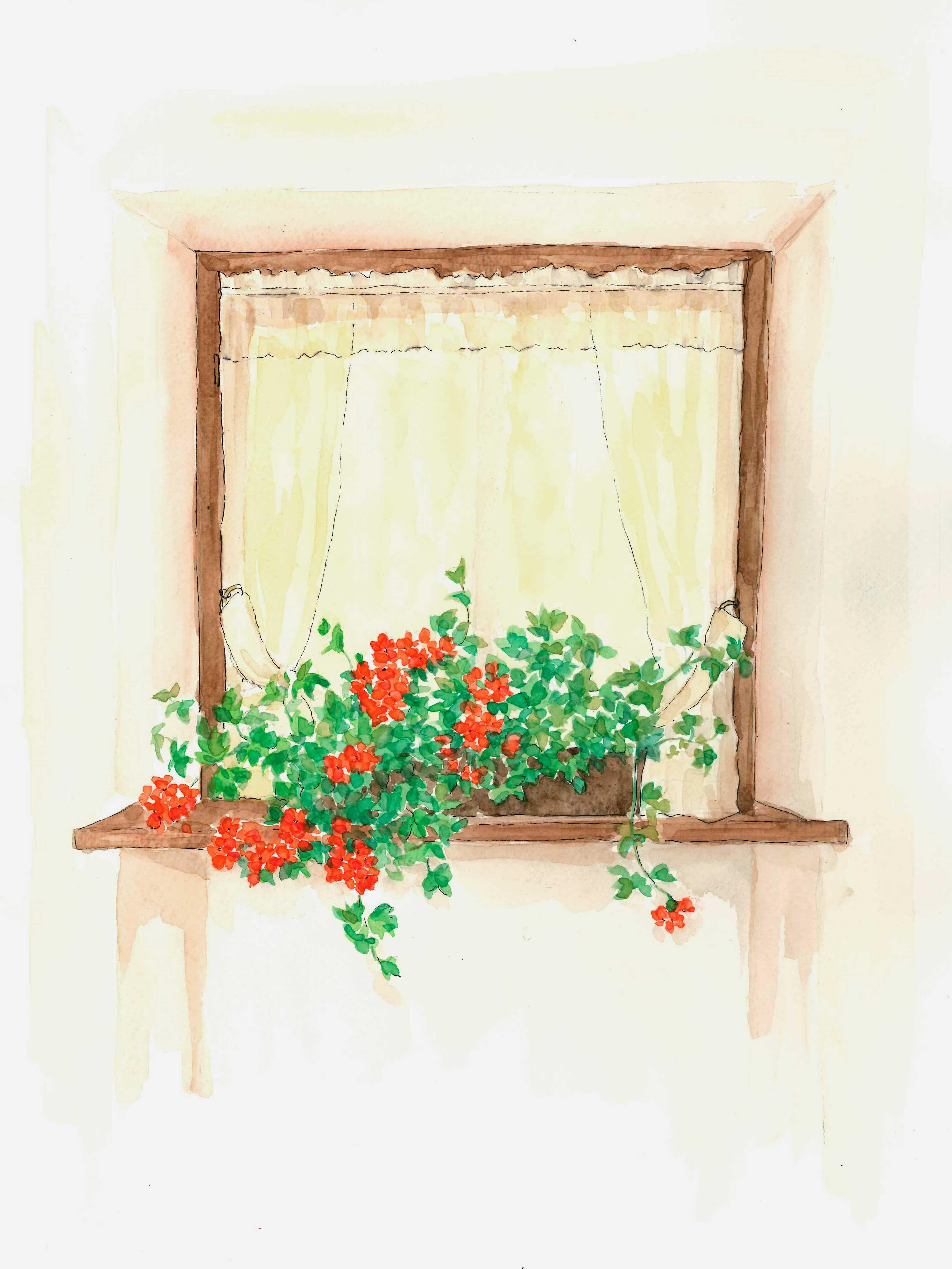 窓,カーテン,花,水彩画,イラスト,インテリア