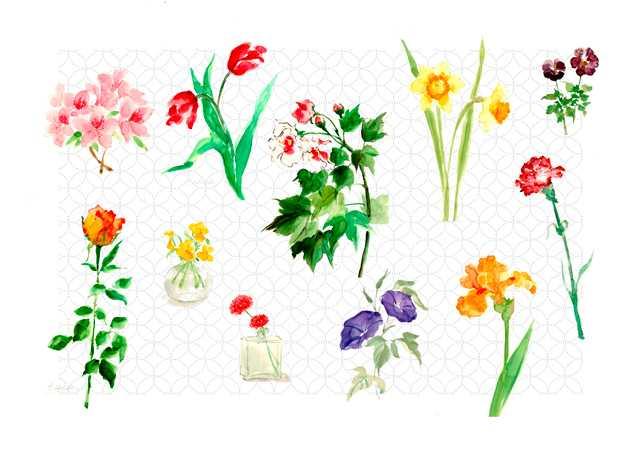花,高塚由子,Yoshiko,Taaktsuka,水彩画,Watercolor,イラスト