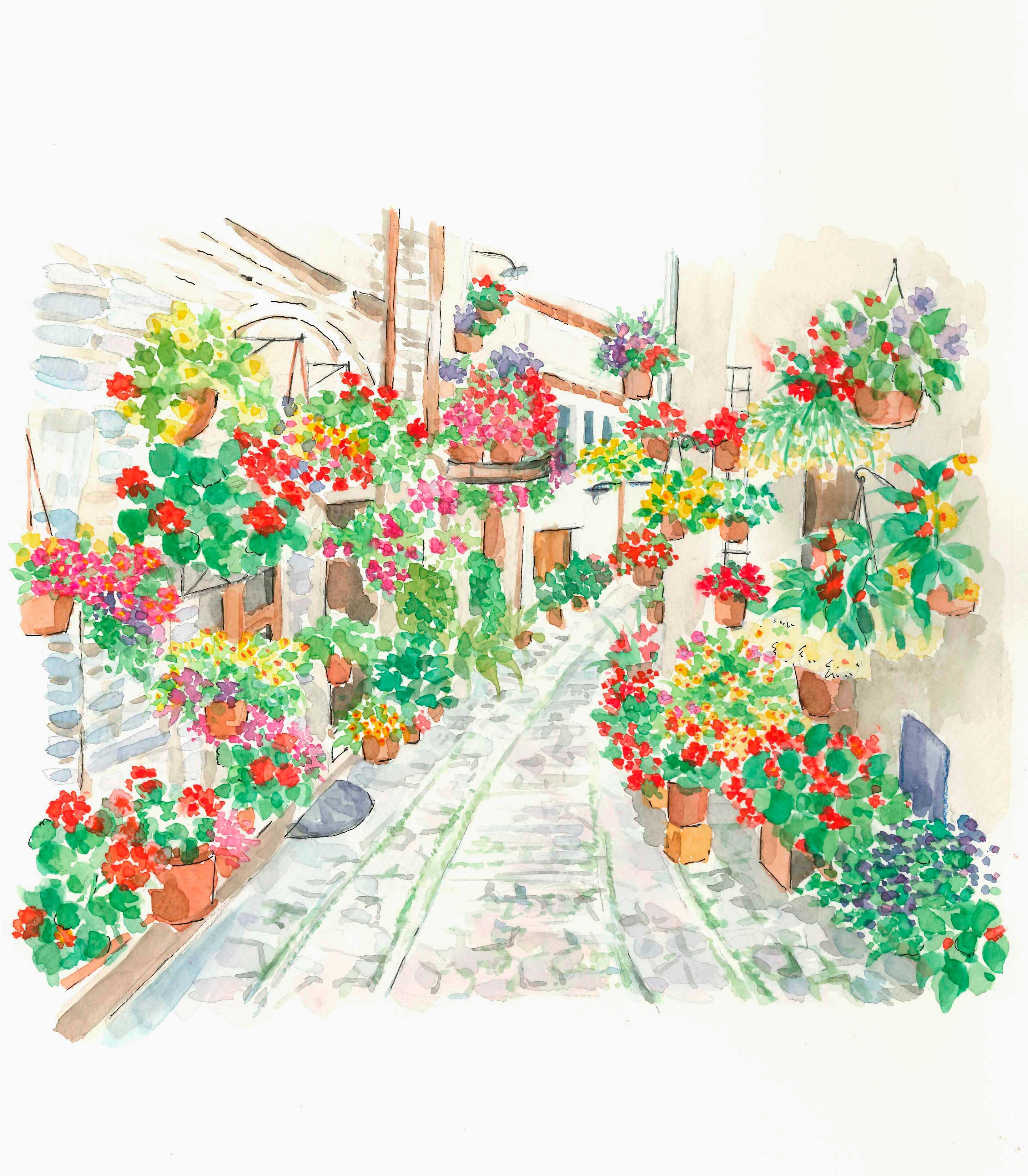 花,イタリア,鉢植え,水彩画,イラスト,町,風景