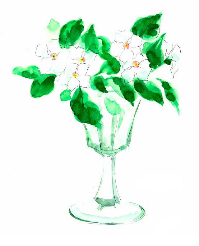 グラス,バカラ,白い花,植物,水彩画,イラスト,素材