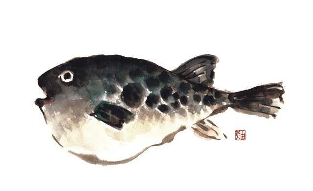 フグ,トラフグ,水彩画,イラスト,魚介,素材