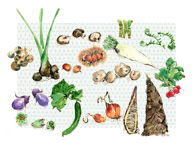 野菜,四季折々,高塚由子,Yoshiko,Taaktsuka,水彩画,Watercolor,イラスト,素材,食材,食べ物