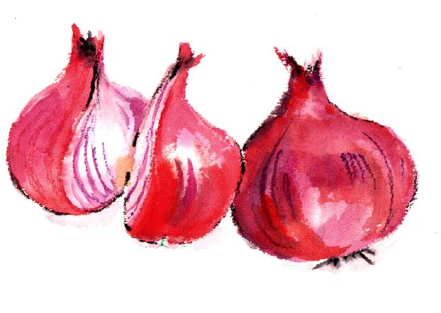 紫たまねぎ,仕事絵,野菜,高塚由子_Yoshiko,Taaktsuka,水彩画,イラスト,素材,食材,食べ物