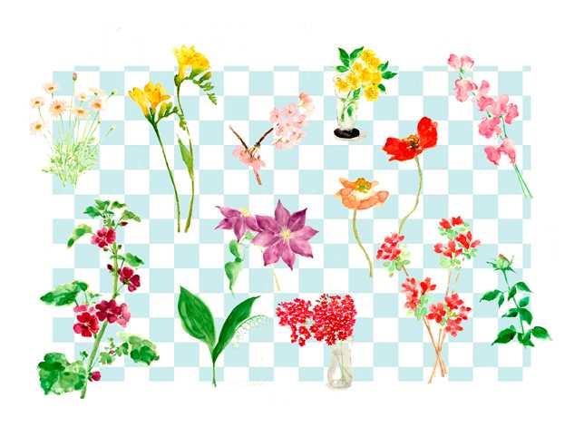 花,植物,高塚由子,Yoshiko,Taaktsuka,水彩画,Watercolor,イラスト