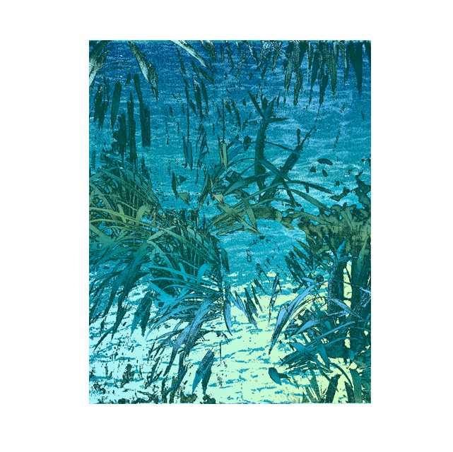 玉川上水,水辺,高塚由子,イラスト