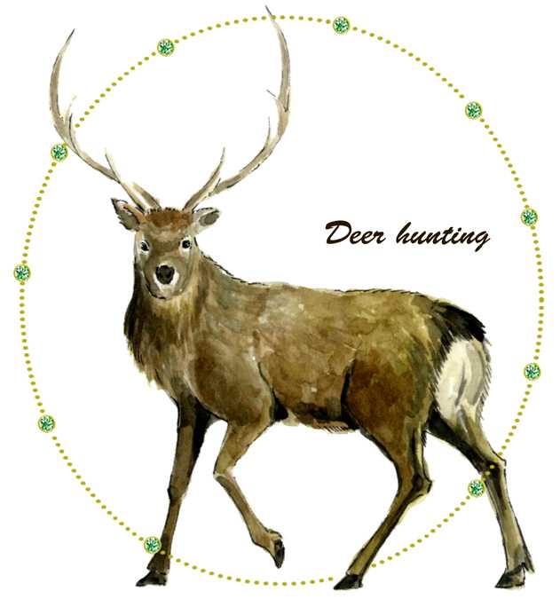 鹿,水彩画,イラスト,動物,素材