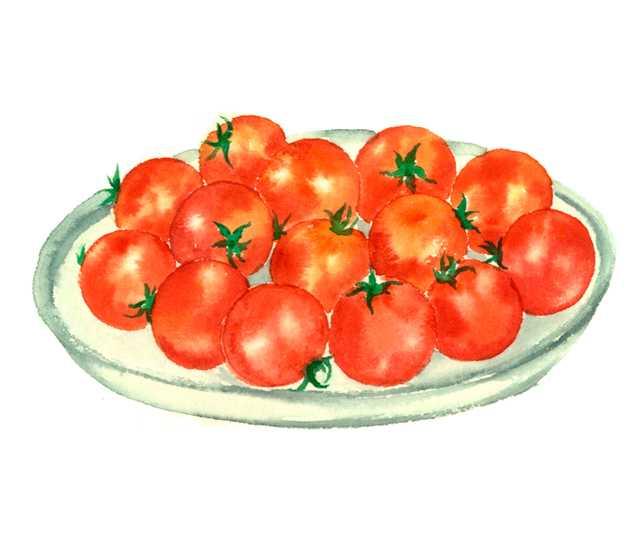 プチトマト,ミニトマト,水彩画,イラスト,素材,食材
